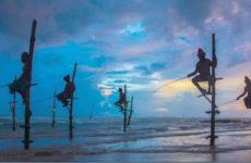 Мировое рыбное хозяйство.